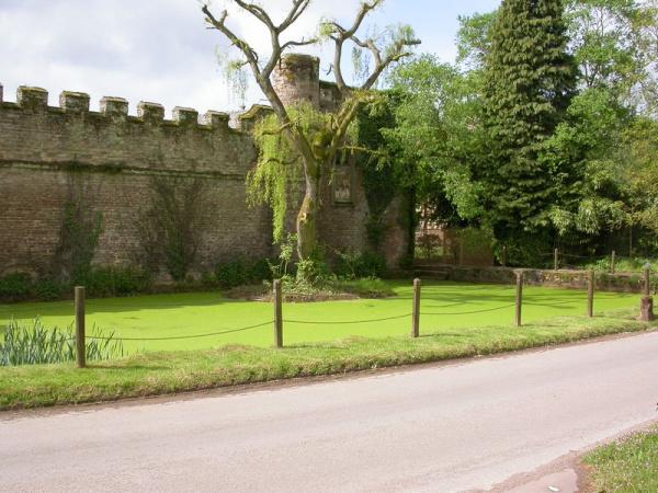 Bollitree Castle_10052014_08
