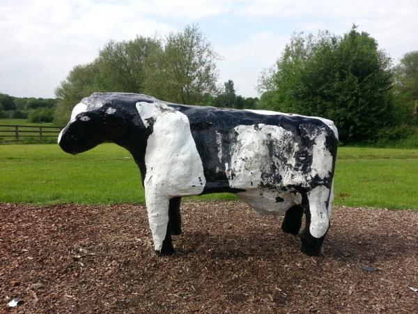 Bancroft Concrete Cows
