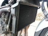 Replacement Blackbird Radiator