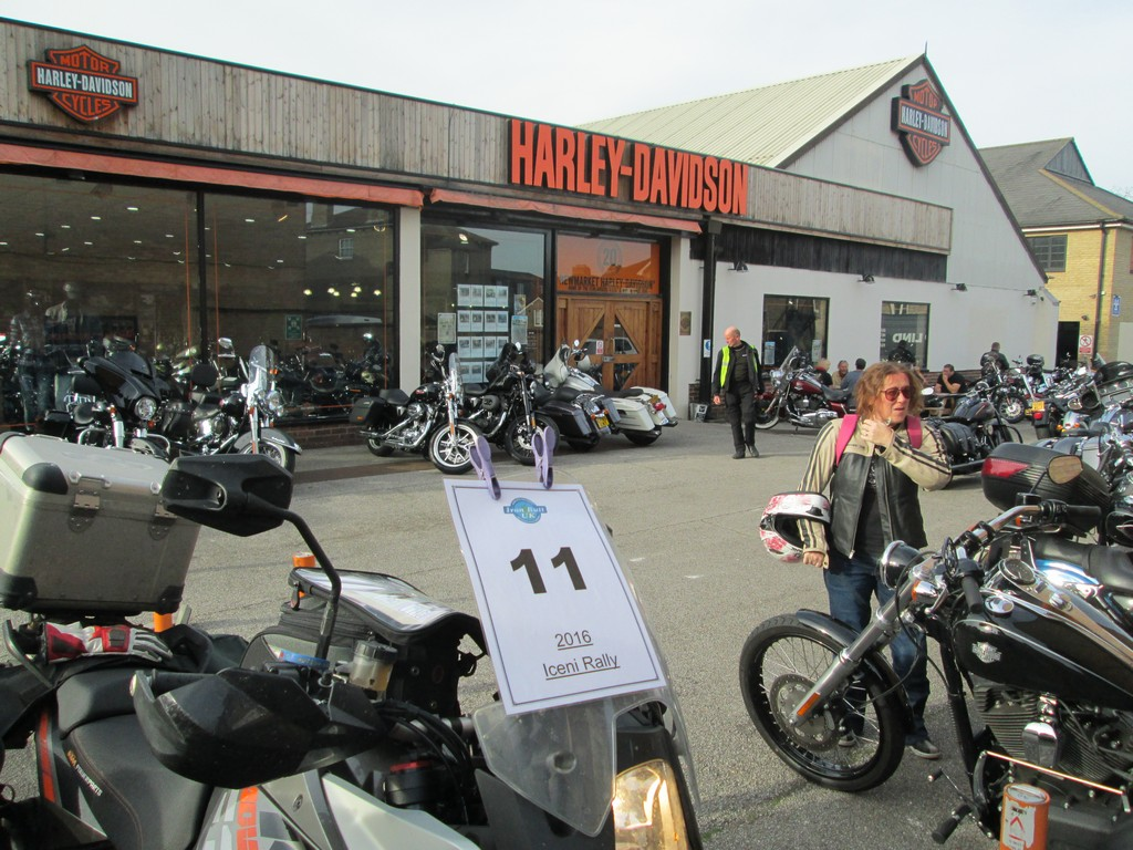 Black Bear Motorcycles