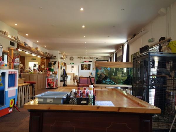 Pinewood Bar & Cafe