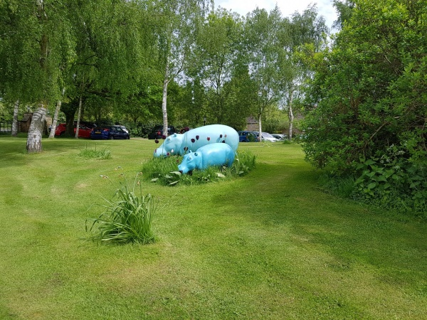 Green Hippo's (Barnsdale Lodge Hotel)